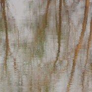 Pintura al agua I (reflejos)